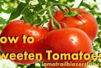 How to Sweeten Tomatoes