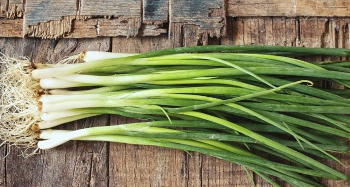green onion substitutes