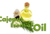 Benefits Of Cajeput Essential Oil