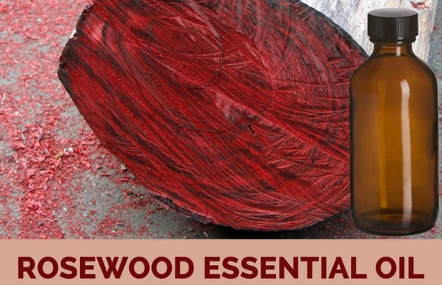 Rosewood Essential Oil Benefits