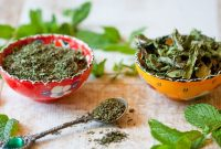 How to Dry Mint Leaves easy